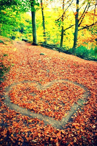fall, leaves, heart in leaves, october, happy