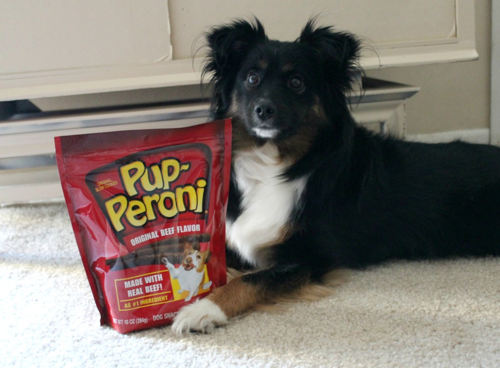 pup-peroni for valentine's day dog treats
