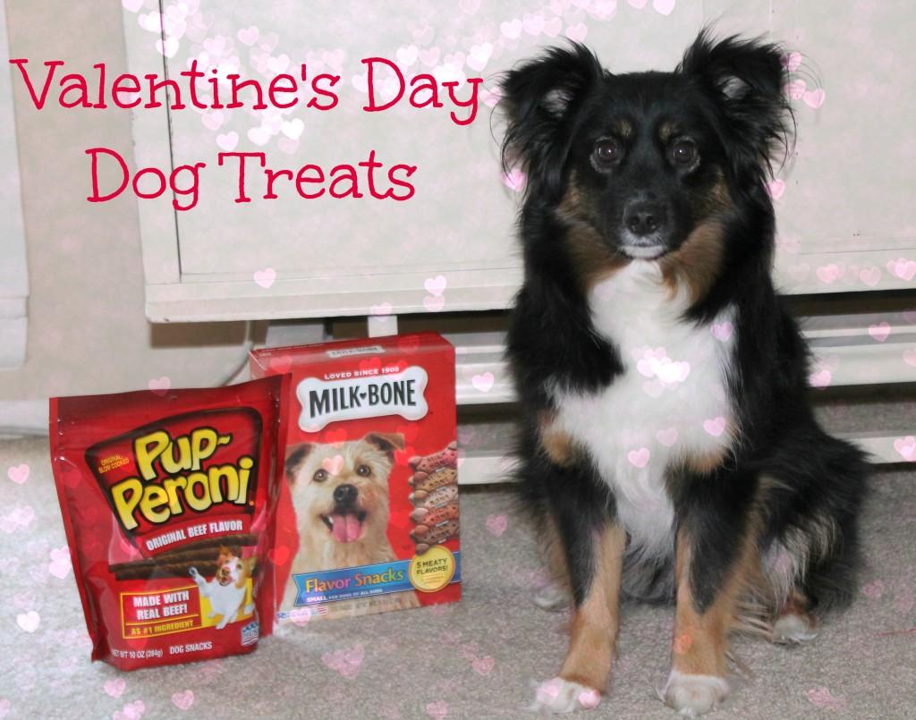 valentine's day doggie treats