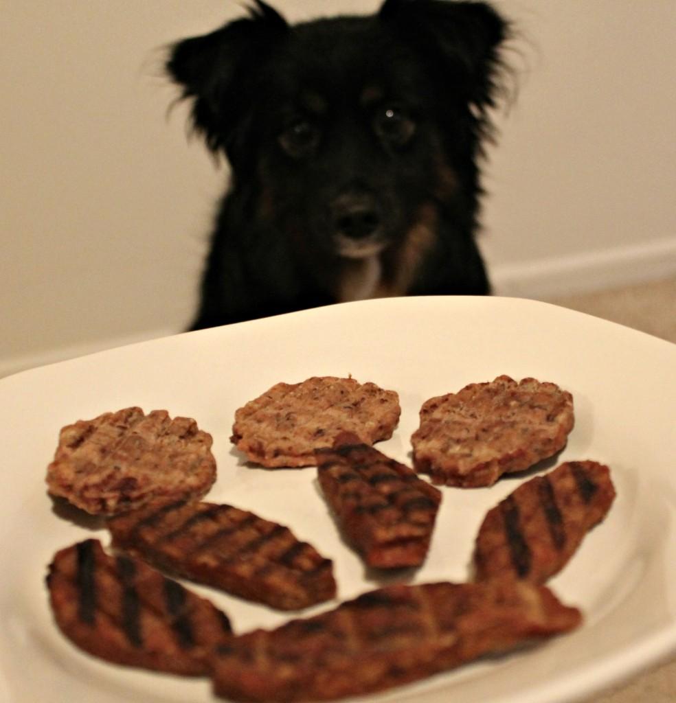 Happy Dog with Nudges Dog Treats
