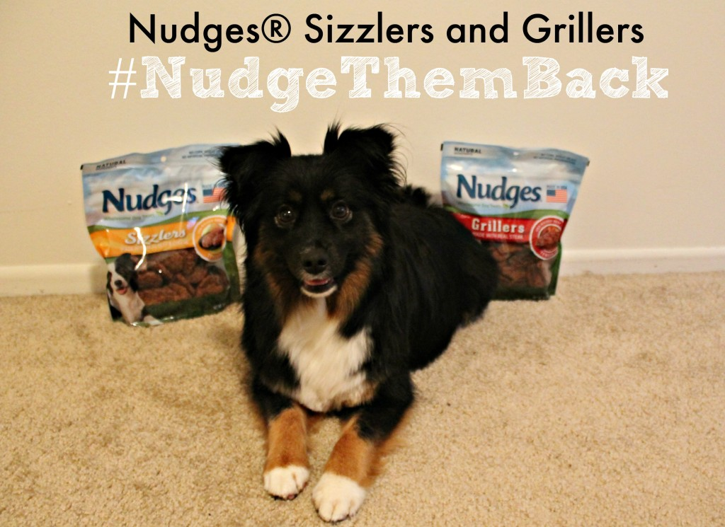 Nudges #NudgeThemBack