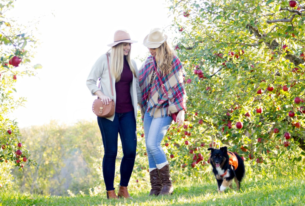 apple-orchard-with-sister