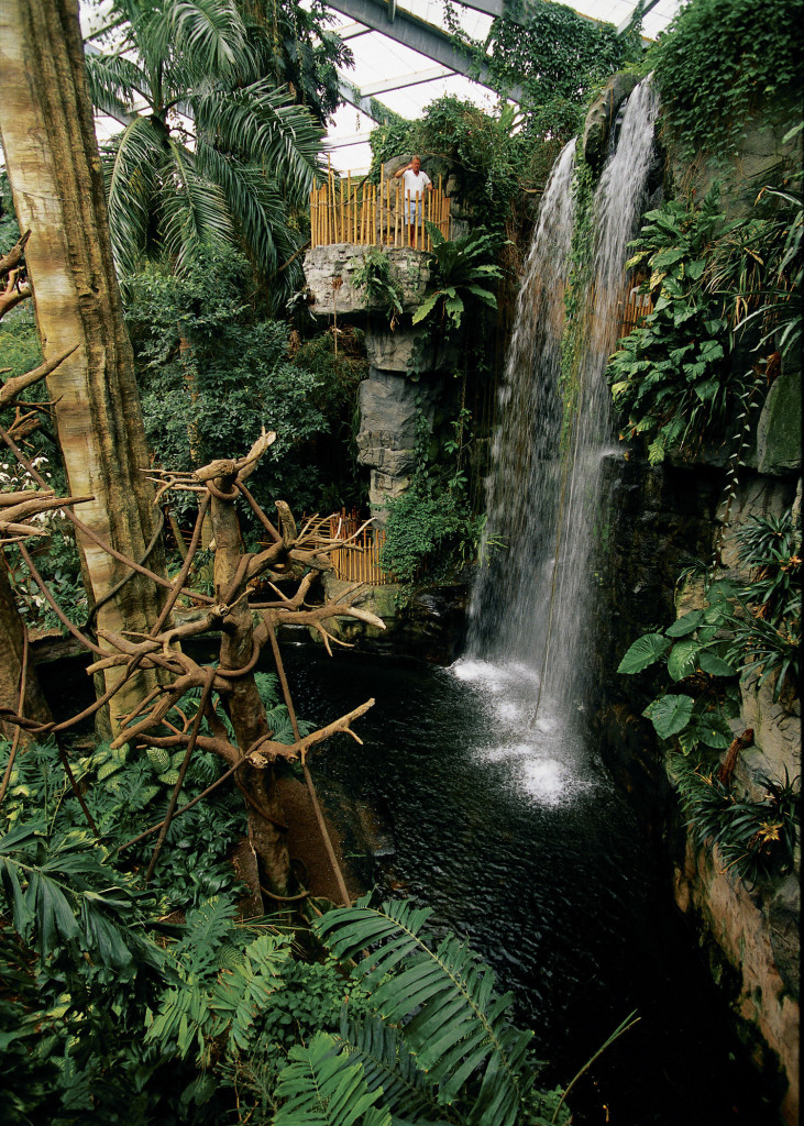 lied_jungle_waterfall_mforsberg