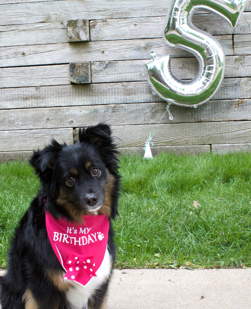 Emma is 5!